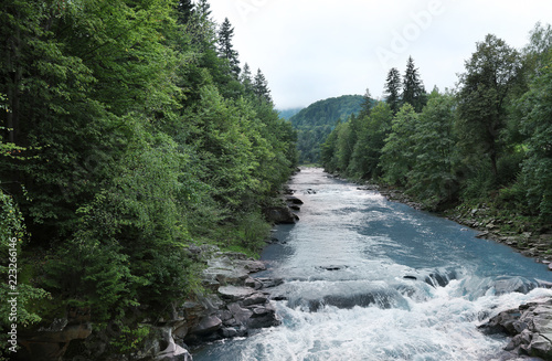 Wild mountain river flowing along rocky banks in forest