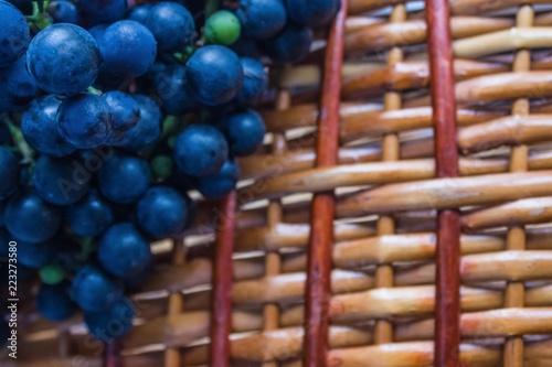 Fotografie, Obraz  Autumn, it's time to harvest.