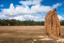 Termite Mound In Australian Ou...