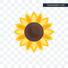 Sunflower Vector Icon Isolated On Transparent Background, Sunflower Logo Design