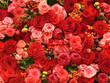 Leinwandbild Motiv Abstract background of flowers