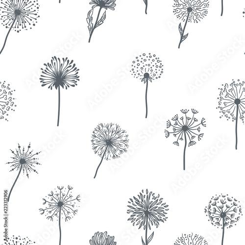 dandelion-stara-roslina-z-ziarnami-kresli-kontur-deseniowy-wektor