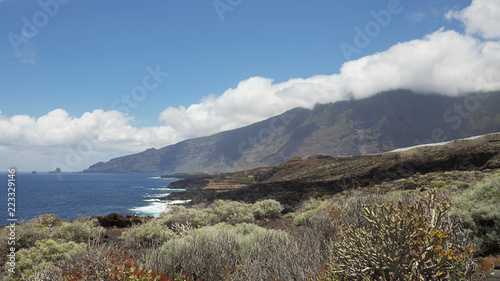 Tuinposter Canarische Eilanden Horizontal shot of coastal views towards the northern part of the island, with focus on the endemic flora, on the walking route to Charco Azul, El Hierro, Canary Islands, Spain