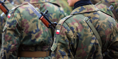 Fotografie, Obraz Polish patch flag on soldiers arm. Poland military unifor