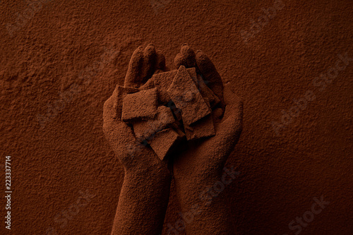 Canvas Print cropped shot of person holding chocolate pieces and cocoa powder
