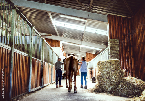 A rear view of senior couple petting a horse in a stable.