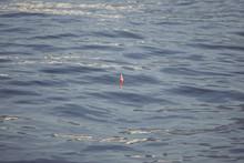 波と釣り用具のウキ