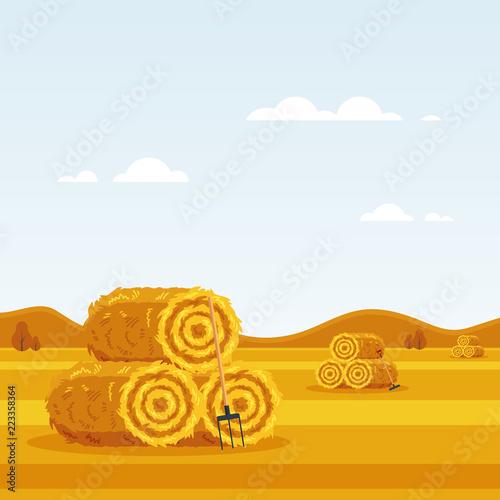 Rural landscape with haystacks, forks on fields Wallpaper Mural