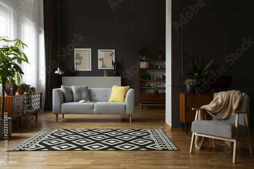 Photo  Real photo of open space dark living room interior with molding and posters on w
