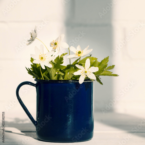 Fototapety, obrazy: Bunch of cute white wild anemone flowers in blue mug. Concept of spring, nature and rural life. White brick wall and wooden table. Copy space. Selective focus.