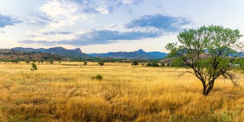 панорама степного пейзажа горами на горизонте, Крым