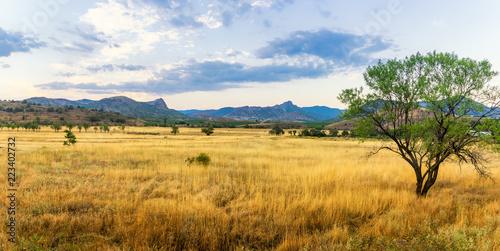 панорама степного пейзажа горами на горизонте, Крым © 7ynp100