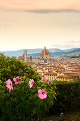 Fototapeta Miasta Flowers in a garden at Piazzale Michelangelo in Florence with Cathedral of Santa Maria del Fiore on background. Italy.