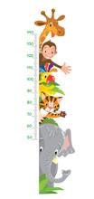 Giraffe, Monkey, Tiger. Meter ...