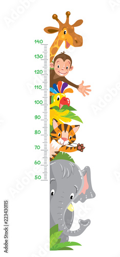 Fotografía  Giraffe, monkey, tiger. Meter wall or height chart