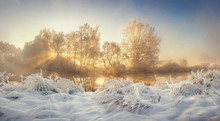 Winter Nature Landscape At Sunrise. Frosty Trees In Morning Sunlight. Christmas Background.