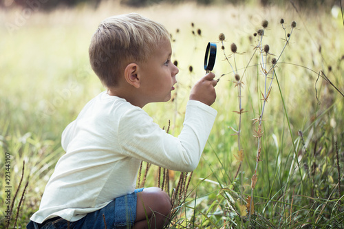 A small boy explores with a magnifying glass plants and insects