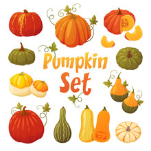Colorful Pumpkin Set
