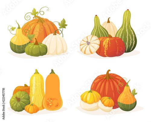Fotomural Colorful pumpkin set