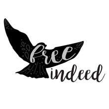 Vector Free Indeed Design With Hand Drawn Flying Bird And Script Text In Black & White.