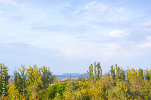 Urban Autumn landscape with trees in sunlight