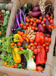 organic vegetables for sale at local market