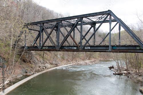 Deurstickers Bos rivier Historic Railway Bridge