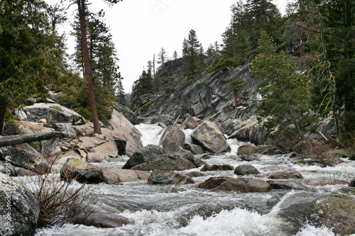 Poster Natuur Park A wild stream in Yosemite National Park