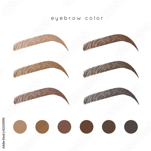 Canvas Print How to make up eyebrow. Brow color