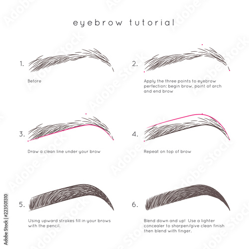Eyebrow Tutorial  How to make up eyebrow - Buy this stock vector and