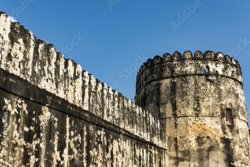 Fotografie, Obraz  The old Fort in Stone Town in Zanzibar