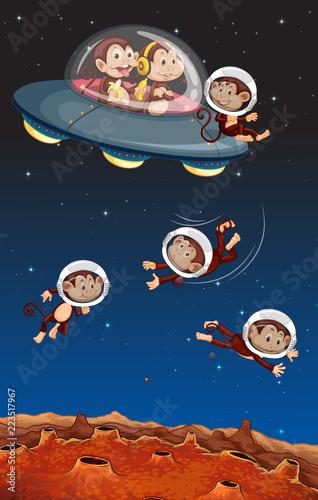 Keuken foto achterwand Kids Monkey on the space