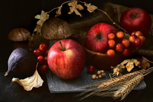 Autumn Still Life In Low Key With Pink Apples And Fall Decorations On Dark Background