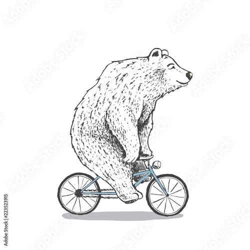 Papel de parede polar bear is riding a bicycle