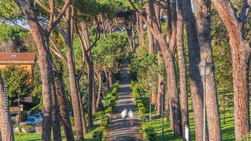 Valokuva  Villa Doria Pamphili park in beautiful town of Albano Laziale timelapse, Italy