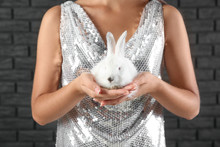 Beautiful Young Woman With Cute Bunny Against Dark Brick Wall, Closeup