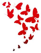 Red  Butterflies, Valentine Card