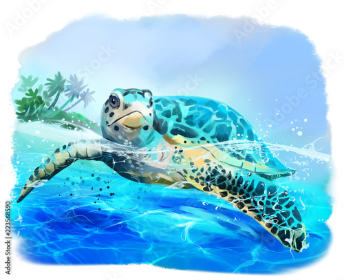 Leinwand Poster Sea turtle floats watercolor drawing