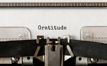 Text Gratitude Typed On Retro ...