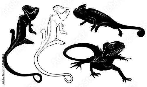 set of silhouettes of reptiles lizard, chameleon Canvas Print