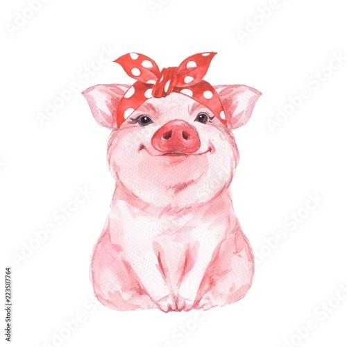 Fotografia, Obraz Funny pig wearing bandana