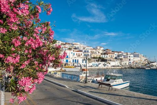 Garden Poster Nice Picturesque Batsi village on Andros island, Cyclades, Greece
