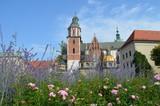 Fototapeta Kwiaty - Wawel - widok z dziedzińca poprzez kwiaty latem, Kraków, Polska