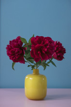 Close-up Of Flowers In Vase On...