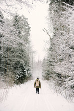Rear View Of Man Walking On Snow Amidst Trees In Forest During Winter
