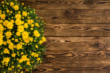 Potted Yellow Chrysanthemum On A Rustic Table