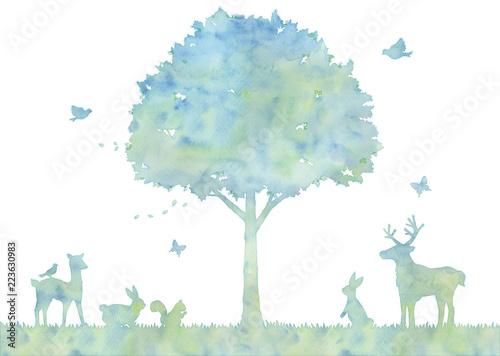 Fotografie, Obraz  木と動物のイラスト