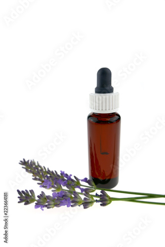 Fotografía  pure lavender oil