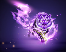 Tiger With Purple Burning Flame
