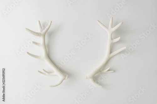 Leinwand Poster White reindeer antlers on bright background